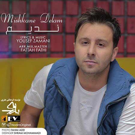 Nadim Mishkane Delam - دانلود آهنگ جدید ندیم عمرانی به نام میشکنه دلم