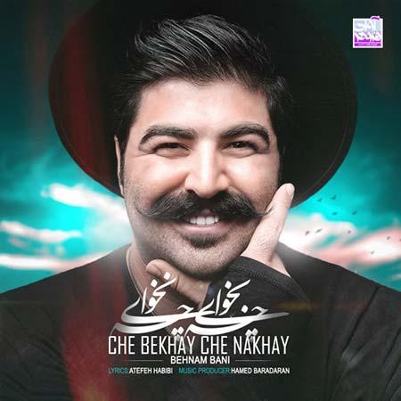 Behnam Bani Che Bekhay Che Nakhay - دانلود آهنگ جدید بهنام بانی به نام چه بخوای چه نخوای